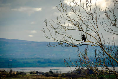 Photograph - Bird's View Of River Fergus In Ireland's County Clare by James Truett