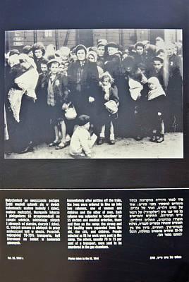 Photograph - Birkenau-6 by Rezzan Erguvan-Onal