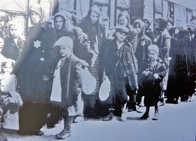 Photograph - Birkenau-7 by Rezzan Erguvan-Onal