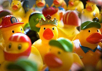 Birthday Ducks Art Print
