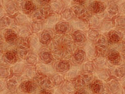 Digital Art - Birthing Mandala 13 by Rhonda Barrett