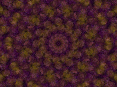 Digital Art - Birthing Mandala 22 by Rhonda Barrett