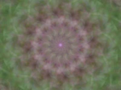Digital Art - Birthing Mandala 3 by Rhonda Barrett