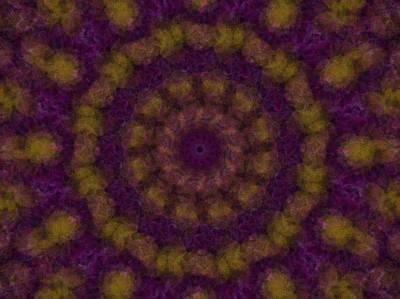 Digital Art - Birthing Mandala 7 by Rhonda Barrett