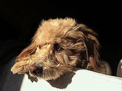 Pups Digital Art - Bisbee by Jen  Brooks Art