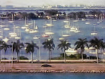 Photograph - Biscayne Love by Thomas J Norbeck