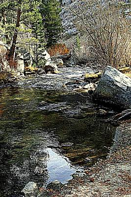 Photograph - Bishop Creek by Lynn Bawden