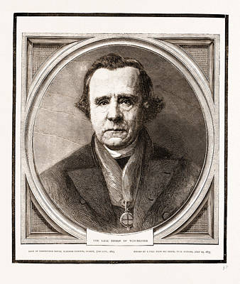 Bishop Drawing - Bishop Of Winchester by Litz Collection