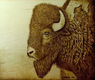 Bison Boss Original by Jo Schwartz