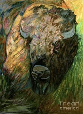 Drawing - Bison by Jon Kittleson