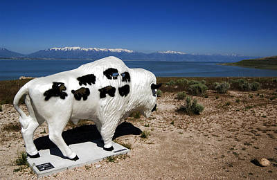 Photograph - Bison Sculpture Great Salt Lake Utah by Bob Pardue