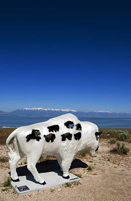 Photograph - Bison Sculpture Salt Lake Utah by Bob Pardue