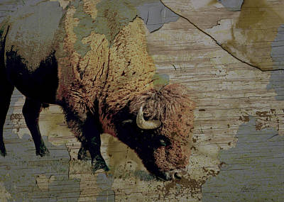 Photograph - Bison Vintage Style -photo- Art by Ann Powell