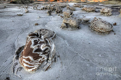 Photograph - Bisti/de-na-zin Wilderness 2 by Bob Christopher