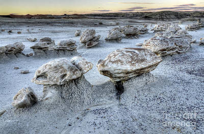 Photograph - Bisti/de-na-zin Wilderness 3 by Bob Christopher
