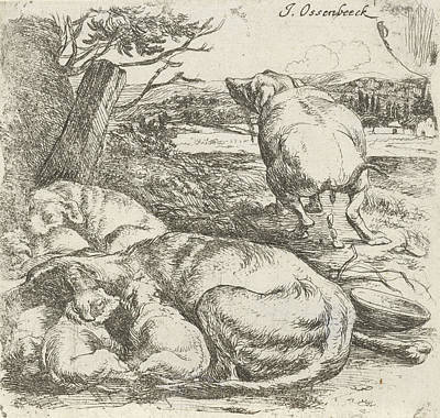 Puppy Drawing - Bitch With Puppies, Jan Van Ossenbeeck by Artokoloro