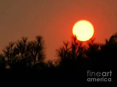 Photograph - Bitter-sweet Beautiful Red Sunrise... by Angela J Wright