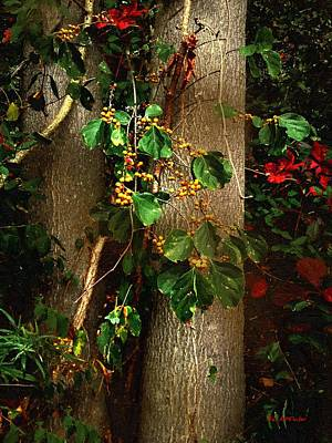 Bittersweet Painting - Bittersweet Autumn by RC deWinter