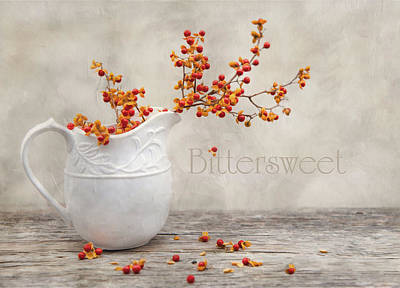 Bittersweet Photograph - Bittersweet by Robin-Lee Vieira