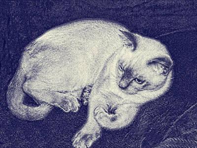 Manipulated Digital Photograph - Blue Kitten Sketch by Linda Phelps