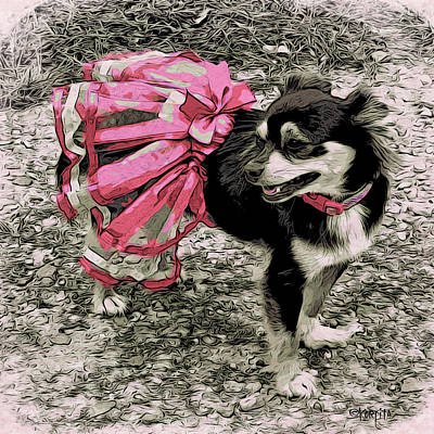 Photograph - Black And Tan Chihuahua - Little Pink Tutu by Rebecca Korpita