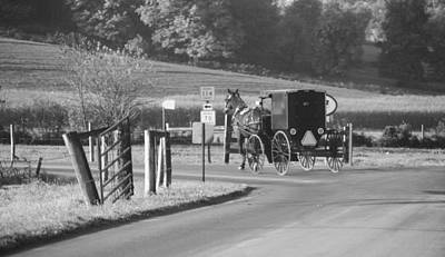 Black And White Amish Horse And Buggy Art Print