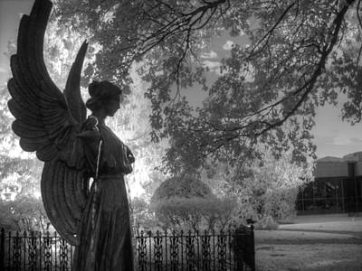 Infared Photograph - Black And White Angel by Jane Linders