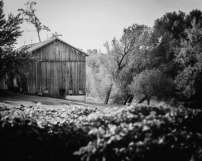 Black And White Barn Landscape - In The Vineyard Art Print by Lisa Russo