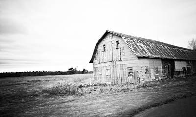Comedian Drawings - Black and White Barn by Maggy Marsh