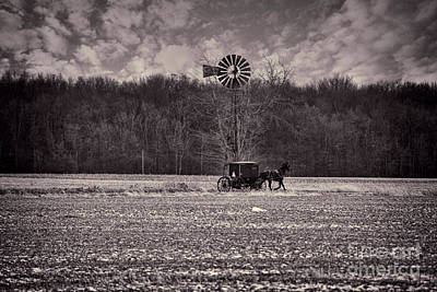 Amish Photograph - Black And White Buggy And Paul's Windmill by David Arment