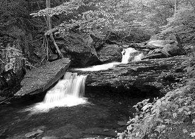 Lucille Ball - Black and White Cascade by Frozen in Time Fine Art Photography