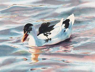 Ducks In Watercolor Painting - Black And White Duck by Mara  Mattia