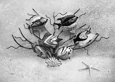Metal Fish Art Photograph - Black And White Fish 1  by Betty LaRue