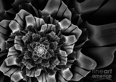 Digital Art - Black And White Fractal Flower by Martin Capek