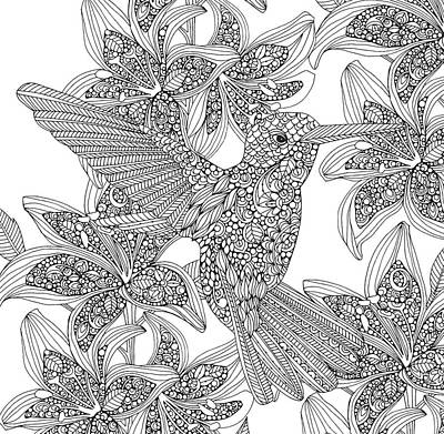 Hummingbird Drawing - Black And White Hummingbird by Valentina Harper