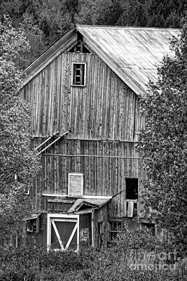 Photograph - Black And White Image Of An Old Country Barn During Fall Foliage by Don Landwehrle
