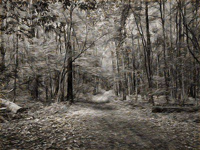 Pathway Digital Art - Black And White Imp Grongarn Forest South Of City Enkoping Sweden by Leif Sohlman