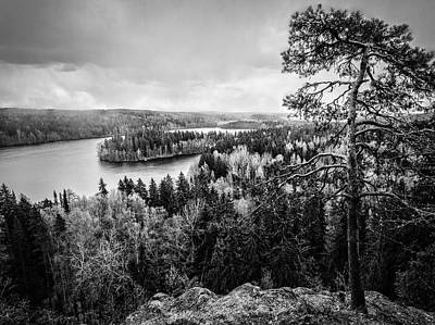 Black And White Lake View Art Print