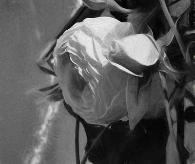 Photograph - black and white monochrome Artistic painterly pink rose in half profile by Leif Sohlman