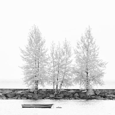 Photograph - Black And White Square Diptych Tree 12-7693 Set 1 Of 2 by Ulrich Schade
