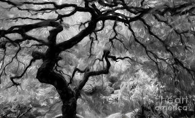 Photograph - Black And White Tree Art by Heinz G Mielke