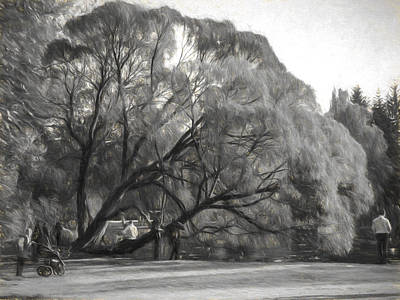 Photograph - Black And White Tree by Vladimir Kholostykh