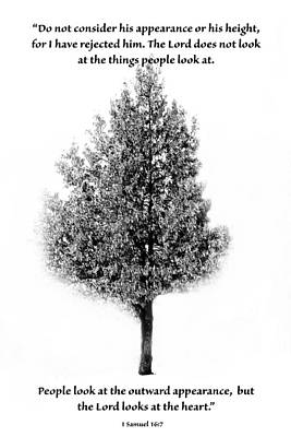 Scripture Photograph - Black And White Tree With Scripture by Debbie Nobile