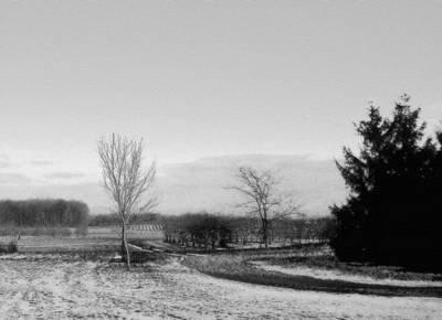 Photograph - black and white upstate NY by Jodie Marie Anne Richardson Traugott          aka jm-ART