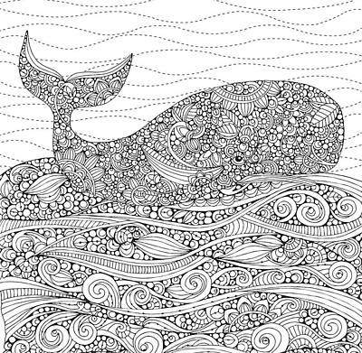 Fun Drawing - Black And White Whale by Valentina Harper