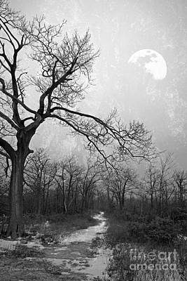 Photograph - Black And White Winter Moonlight Blues by John Stephens