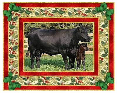 Black Angus Cow And Calf Blank Christmas Greeting Card Art Print by Olde Time  Mercantile
