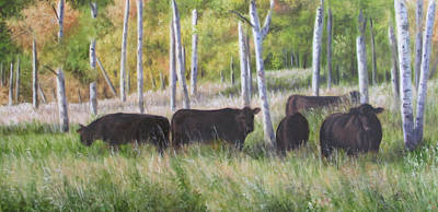 Black Angus Grazing Art Print