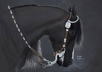 Western Riding Pastel - Black Arabian by Heather Gessell