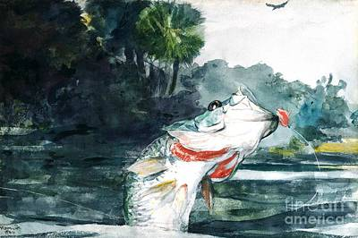 Painting - Black Bass  by Roberto Prusso